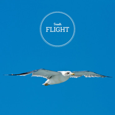 smooth-flight